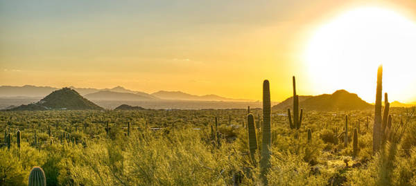 Photograph - Arizona Sunset Paradise by Ants Drone Photography