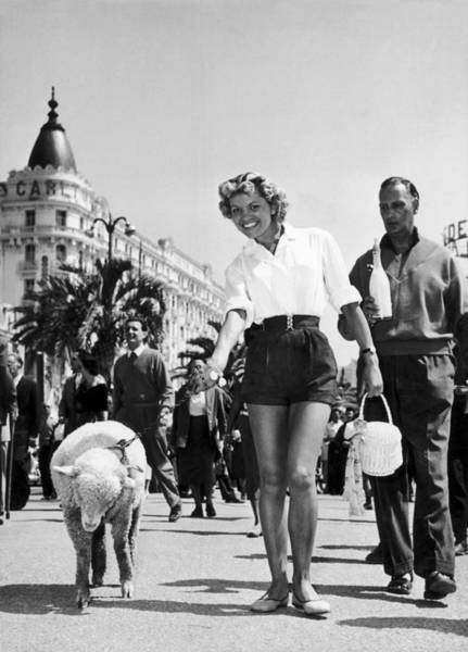 Cannes Photograph - Arlette Patrick And His Sheep At Cannes by Keystone-france