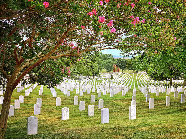 Photograph - Arlington Cemetery 1 by Jill Love