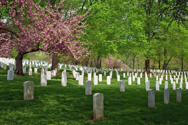 Wall Art - Photograph - Arlington National Cemetery, Washington by William Manning