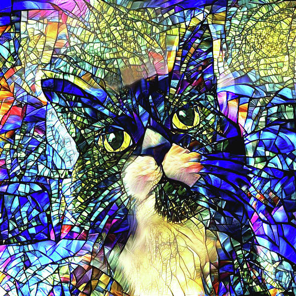 Digital Art - Armani The Black And White Cat by Peggy Collins