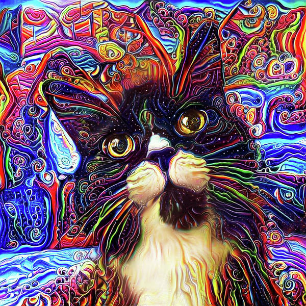 Digital Art - Armani The Tuxedo Cat by Peggy Collins