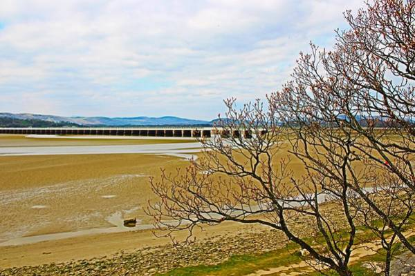 Wall Art - Photograph - Arnside Viaduct In Distance by Loretta S