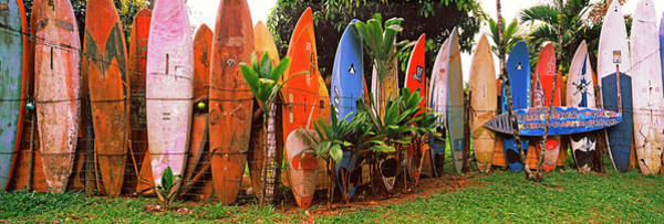 Wall Art - Photograph - Arranged Surfboards, Maui, Hawaii, Usa by Panoramic Images