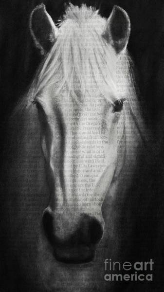 Drawing - Art In The News 145- Horse by Michael Cross
