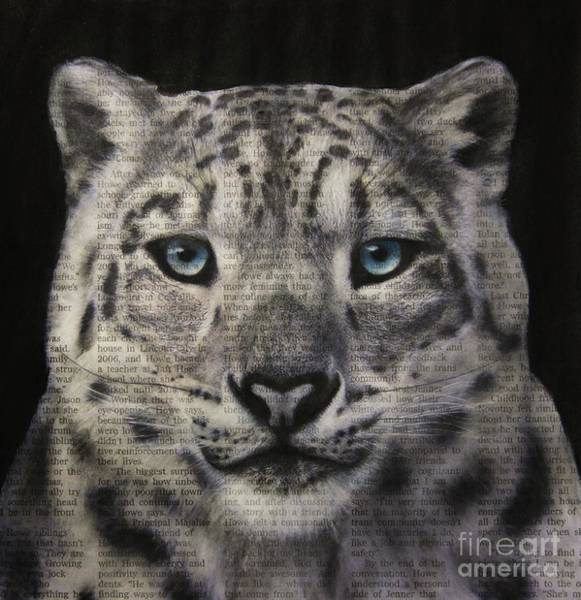 Drawing - Art In The News 150- Snow Leopard by Michael Cross
