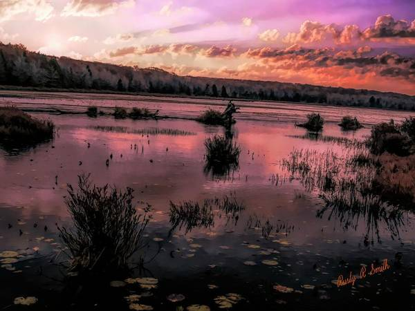 Digital Art - Art Photograph Of The Back End Of The Lake At Black Moshannon St by Rusty R Smith