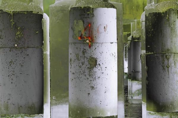 Photograph - Art Print Columns 8 by Harry Gruenert