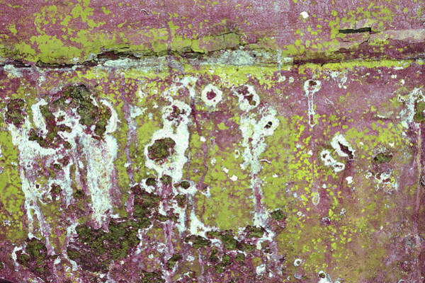 Photograph - Art Print Patina 51 by Harry Gruenert