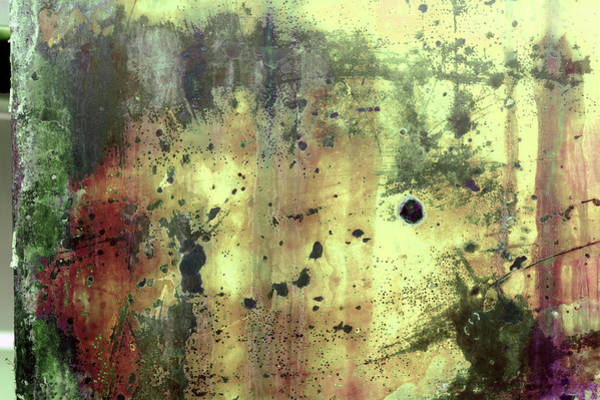 Photograph - Art Print Patina 54 by Harry Gruenert
