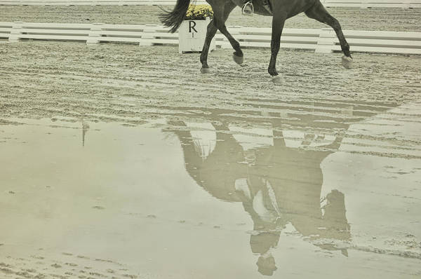 Photograph - Art Reflected by JAMART Photography