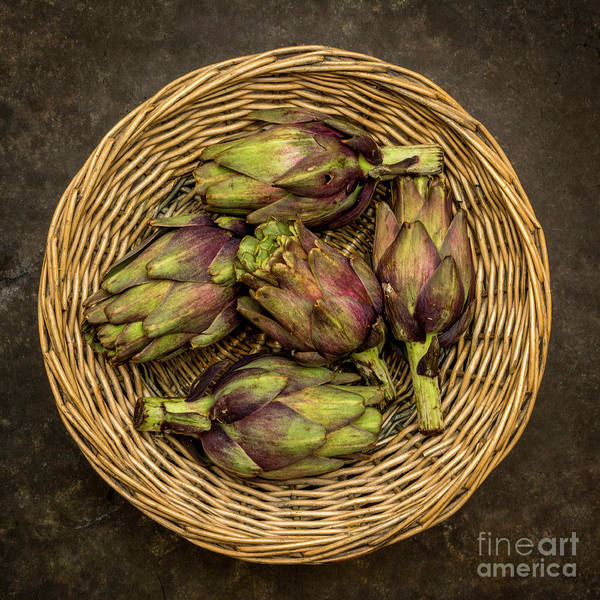 Wall Art - Photograph - Artichokes In A Wicker Basket. by Bernard Jaubert