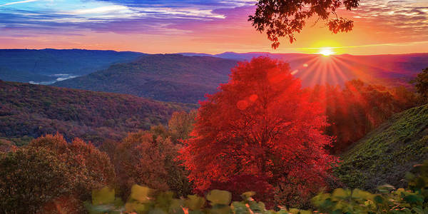 Wall Art - Photograph - Artist Point Autumn Glory Panorama - Mountainburg Arkansas by Gregory Ballos