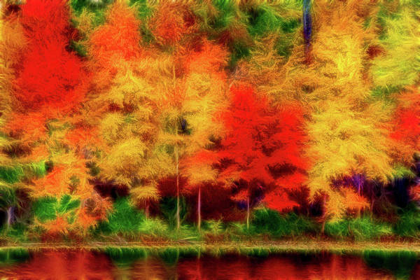 Photograph - Artistic 2 Fall Colors by Don Johnson
