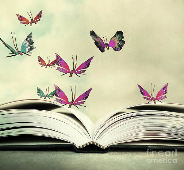 Wall Art - Photograph - Artistic Image Of An Open Book And by Valentina Photos