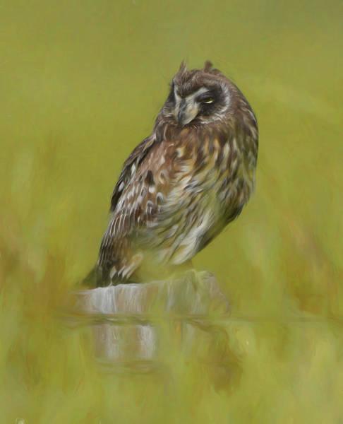Mixed Media - Artistic Owl On Fence Post by Pamela Walton