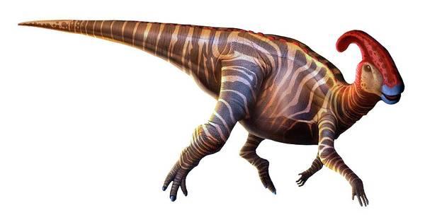 Paleozoology Wall Art - Digital Art - Artwork Of A Parasaurolophus Dinosaur by Mark Garlick
