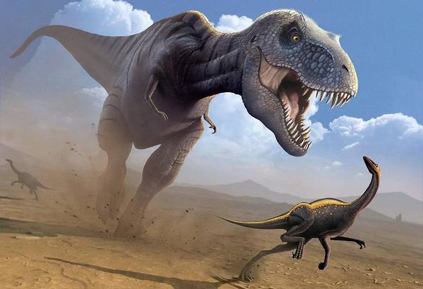 Paleozoology Wall Art - Digital Art - Artwork Of A Tyrannosaurus Rex Hunting by Science Photo Library - Mark Garlick
