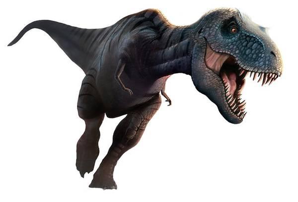 Paleozoology Wall Art - Digital Art - Artwork Of A Tyrannosaurus Rex Running by Mark Garlick