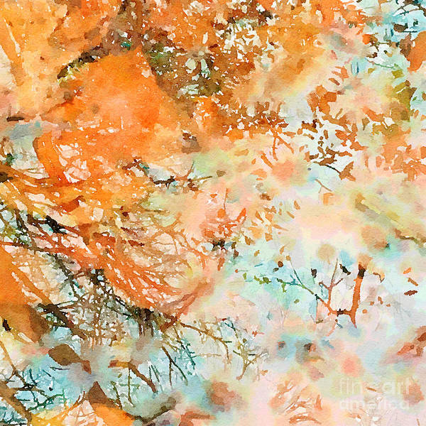 Photograph - As Above So Below by Chris Scroggins