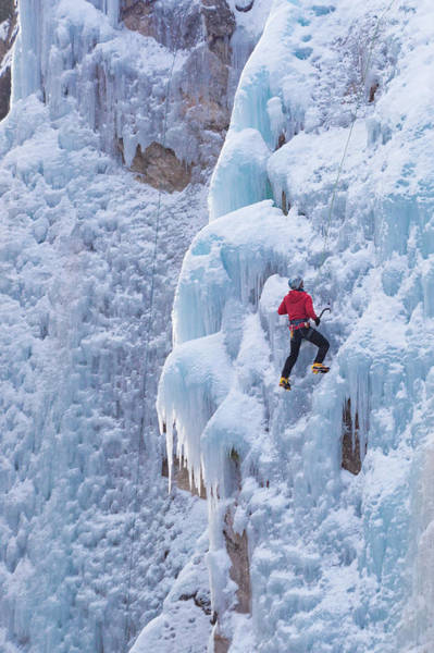 Wall Art - Photograph - Ascending The Icy Box Canyon by Bridget Calip