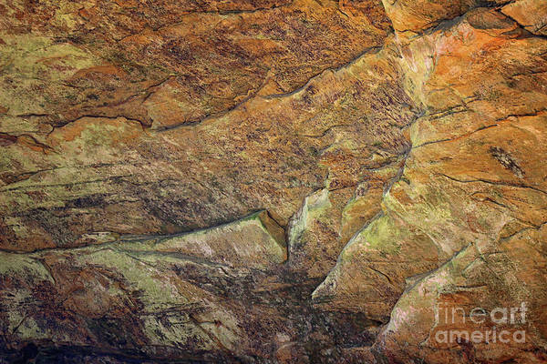 Photograph - Ash Cave Abstract by Karen Adams