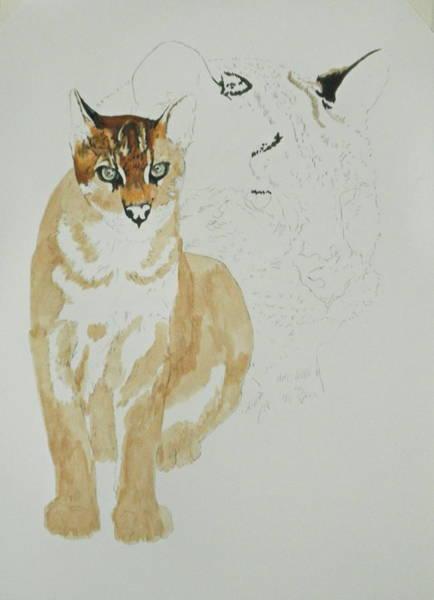 Mixed Media - Asian Golden Cat by Barbara Keith