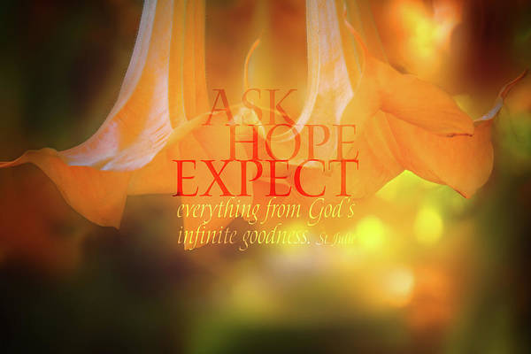 Blooms Digital Art - Ask Hope Expect Flower by Terry Davis