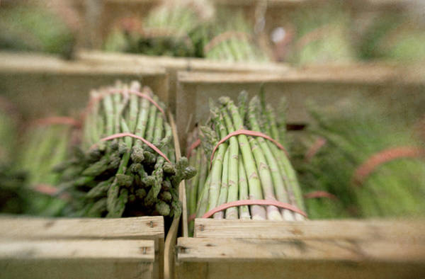 Retail Photograph - Asparagus In French Market by Paul Grand Image