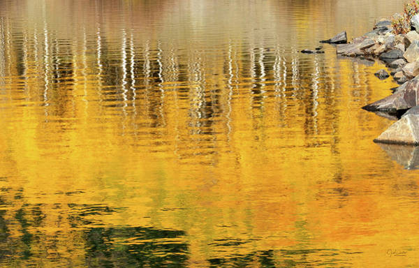Wall Art - Photograph - Aspen Reflections Abstract by Judi Dressler