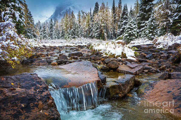 Wall Art - Photograph - Assiniboine Winter Cascade by Inge Johnsson