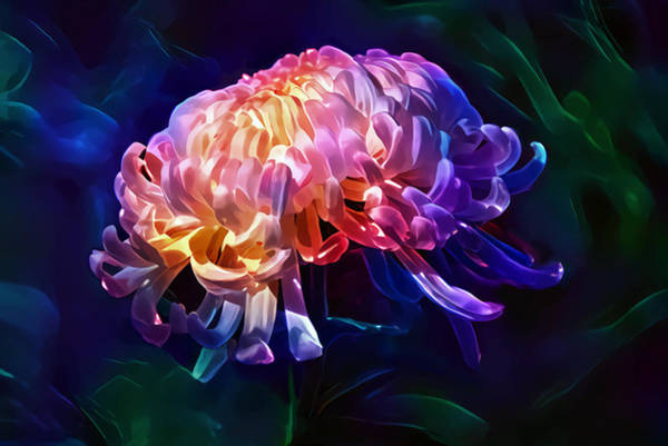 Wall Art - Digital Art - Aster by Artly Studio