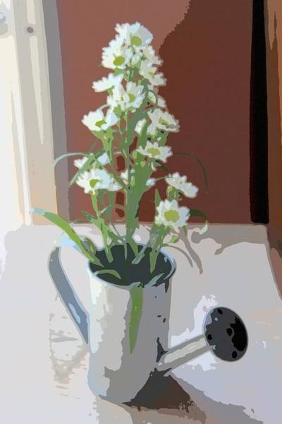 Milk Farm Restaurant Photograph - Aster In Watering Can 2 by Cathy Lindsey