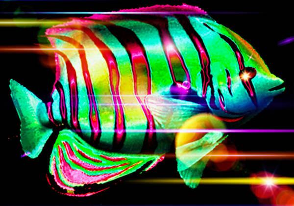 Phish Digital Art - Astral Traveler by Phil Sadler