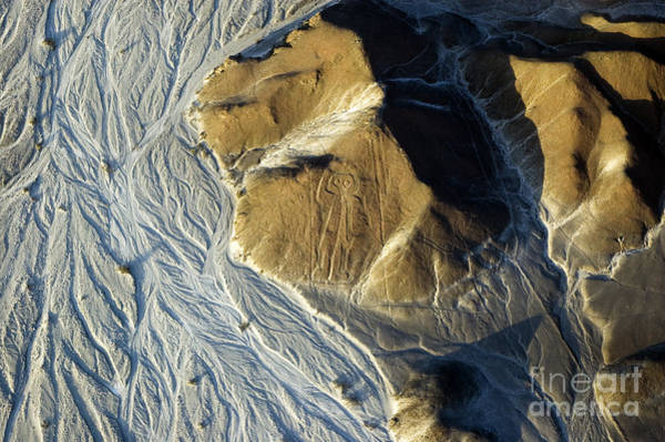 Wall Art - Photograph - Astronaut, Nazca Lines In Peru by Faberfoto-it