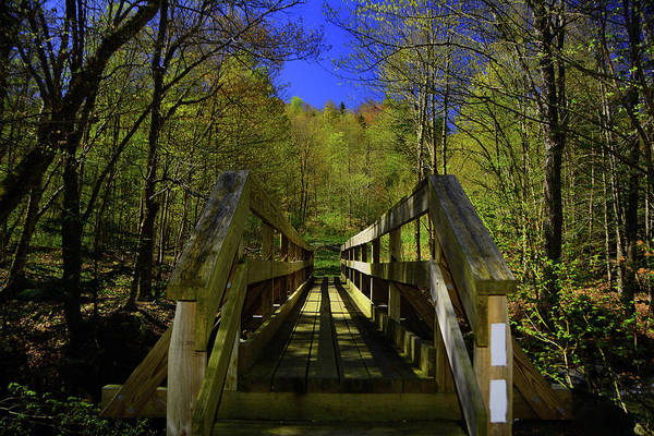 Stoney Brook Photograph - At Crosses Vt's Stoney Brook Horizontal by Raymond Salani III