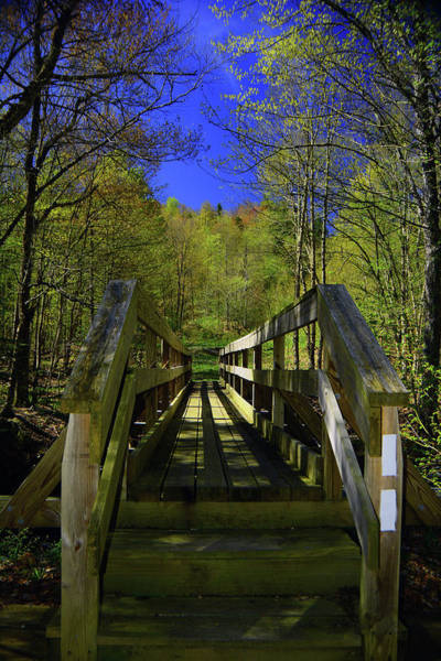 Photograph - At Crosses Vt's Stoney Brook by Raymond Salani III