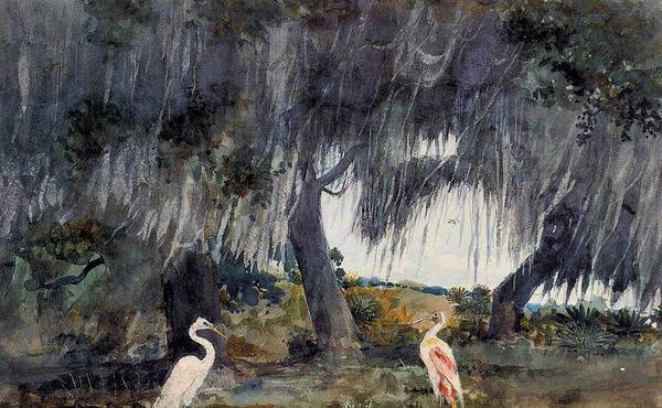 Wall Art - Painting - At Tampa Winslow Homer by Celestial Images