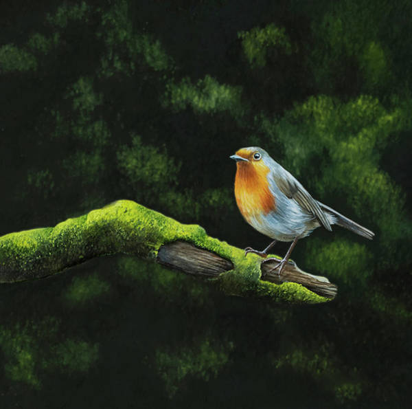 Wall Art - Painting - At The Edge Of The Woods by Brita Seifert