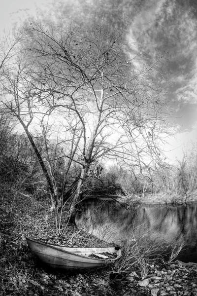 Photograph - At The End Of Autumn In Black And White by Debra and Dave Vanderlaan