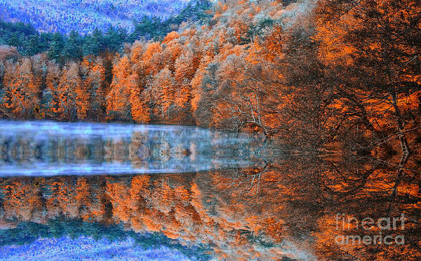 Wall Art - Photograph - Ataturk Arboretum by Samet Guler