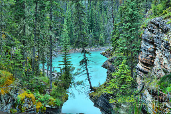 Photograph - Athabasca River Canyon by Adam Jewell