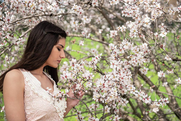 Wall Art - Photograph - Attractive Young Beautiful Lady,  Enjoying Spring Plum Blossom F by Michalakis Ppalis