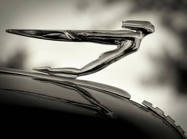 Collector Digital Art - 1936 Auburn 851 Sc Boattail Speedsterdster Hood Ornament by Douglas Pittman