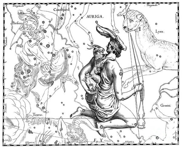 Wall Art - Drawing - Auriga by Johann Hevelius