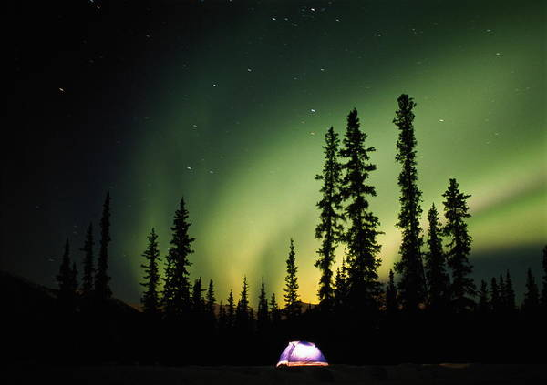 Tent Photograph - Aurora Borealis Above Tent At Night by Steven Nourse