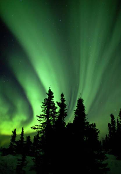 Alaska Photograph - Aurora Borealis, Fairbanks, Alaska by Ron Crabtree