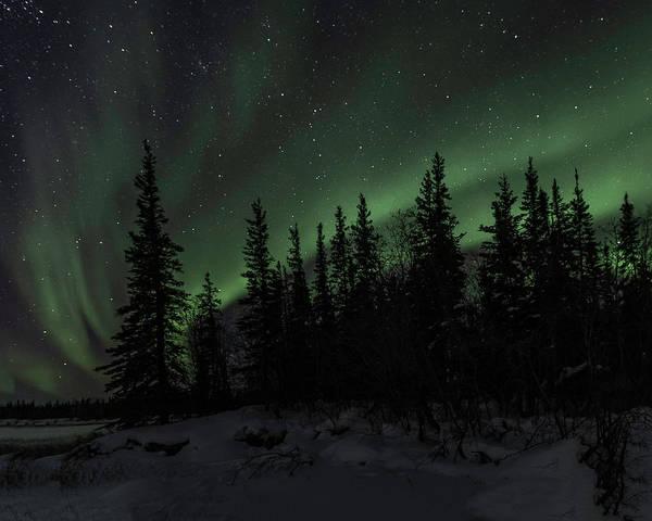 Photograph - Aurora Borealis by Laura Hedien