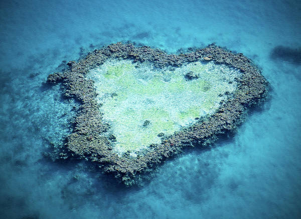 Reef Photograph - Australia, Queensland, Great Barrier by Anthony Johnson