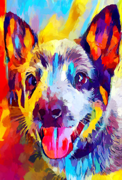 Wall Art - Painting - Australian Cattle Dog 3 by Chris Butler